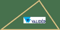 Valider_triangle_yellow1