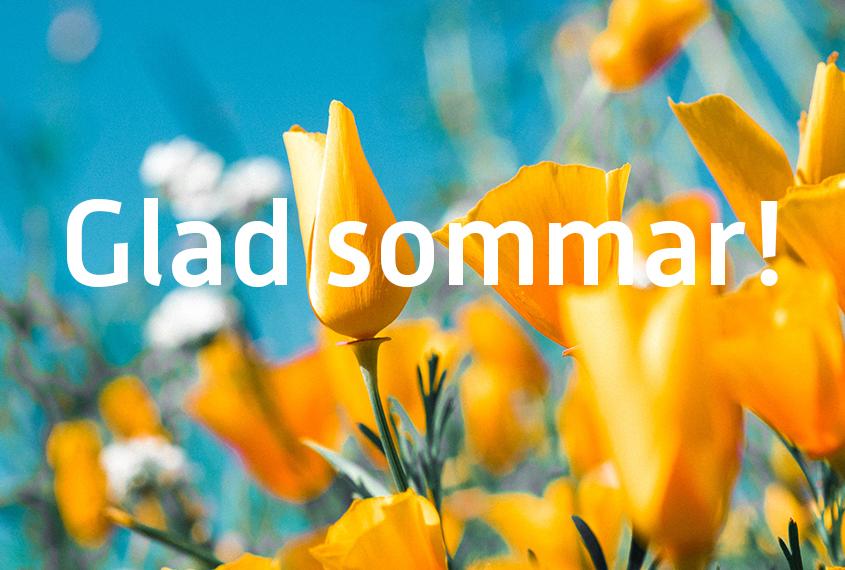 Sommar_webb845x570
